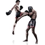 Internet Marketing Has Been Very Beneficial for Muay Thai website